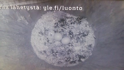 20170423_183813