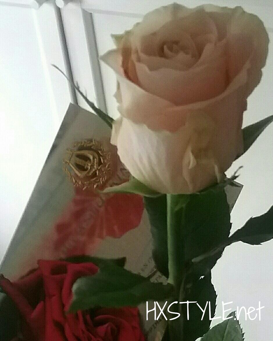 IMG_20170604_081939