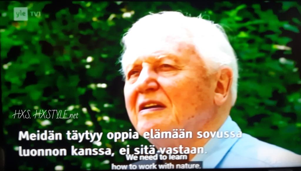 YLE TV1 Haastattelu Elokuva Dokumentti, KATSO elokuvat...